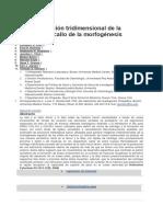 Aarticulo 1 de Histologia Traducido