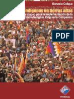 autonomia en tierras altas.pdf