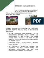 La Deforestación en San Miguel Peras