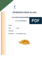 UCV-trabajo-hecho.doc