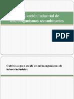 3. Utilizacin Industrial de Microorganismos Recombinantes