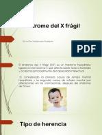 x fragil final.pptx