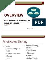 1-N 289 Psychosocial Nursing Overview Ppt - Copy-2