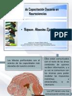 Apunte D - Atención Ejecutiva.pdf