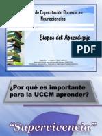 Etapas del aprendizaje.pdf