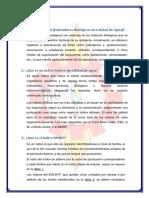Discusión2.docx