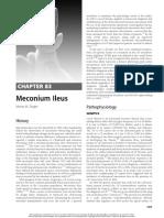 Meconium Ileus