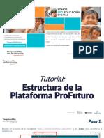 Estructura de la plataforma.pdf