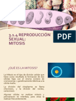 3.1.4 Reproduccion Sexual,Mitosis.