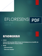PPT-EFLORESENSI fixxxx