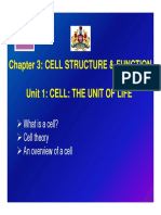 Cell Structure and Functions