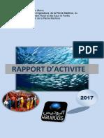 Rapport+dactivité+DPM+2017.pdf