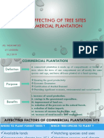 Factors Affecting of Tree Sites for Commercial Plantation