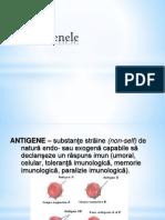 Antigen Ele