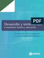 Desarrollo y Territorio 3.pdf