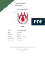 LAP.FISTUM 1 ANGGA.doc