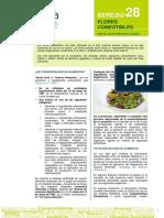 berezi flores comestibles formato.pdf