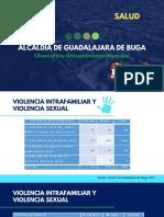 Violencia Intrafamiliar y Sexual_Observatorio Socioeconómico