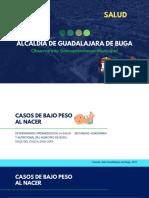 Casos de Bajo Peso Al Nacer_Observatorio Socioeconómico