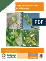 manejo_del_nogal_pecanero_con_base_en_su_fenologia1.pdf