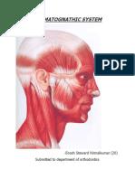 stomatognathicsystem-130728000957-phpapp01