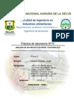 INFO FISICA 2 ULTIMO.docx