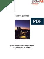 Guia de gestiones.pdf