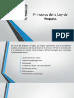 Principios-fundamentales-de-la-Ley-de-Amparo (6).pptx