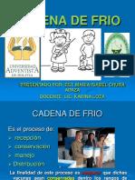 64191482 Cadena de Frio