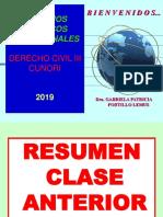 3 CLASE  CIVIL III PLAZO Y SIMULACIÓN FEBRERO 2019 (1).ppt