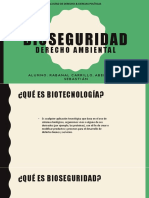 Bioseguridad - Rabanal Carrillo