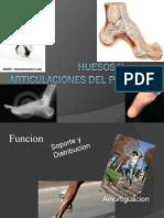 Huesos y Articulaciones Del Pie(2)