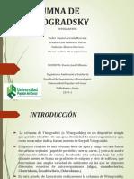 Columna de Winogradky Biologia 2