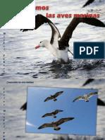 Carlos  Michel  Fumero - Conozcamos las aves marinas