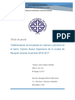 Tesis Castro,Valeria Zoonosis Nueva Esperanza