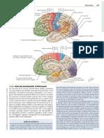 Tractos 1.pdf