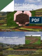 Armando Guédez Rodríguez - Beneficios del abono orgánico para las plantas