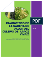 Diagnostico Arroz Maiz