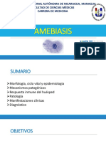 Amebiasis, Aha, Amebiasis Cutánea, Meap PDF