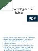Bases Neurológicas Del Habla