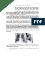 1- Anatomia e Fisiologia