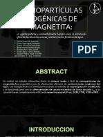 Nanopartículas Biogénicas de Magnetita