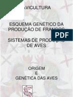 Aula 2 Genetica e Sistemas de Criacao