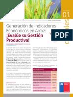 2-3-QUILAMAPU-Generacion-indicadores-arroz.pdf