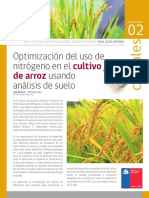 2 8 QUILAMAPU Optimizacion N Arroz