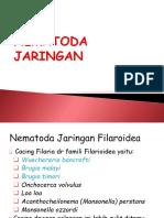 NEMATODA JARINGAN