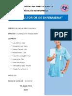 INFORME CONSULTORIOS DE ENFERMERIA.docx