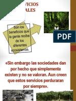 2.4.1 Servicios Ambientales