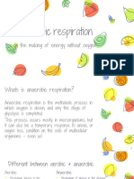 anaerobic respiration ppt