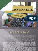 budidayaikanlele-130609072121-phpapp02.pdf